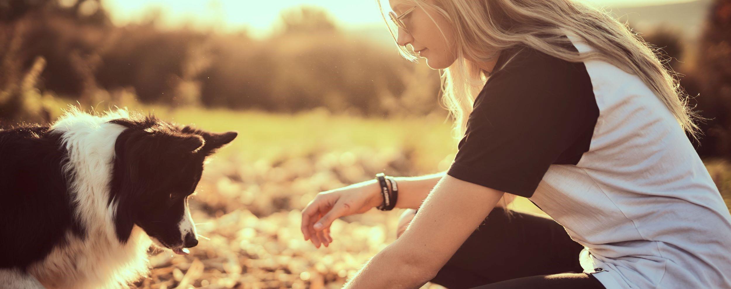 Magischer Moment in der Abendsonne zwischen Hundetrainerin Laura Heier und Border Collie Nana