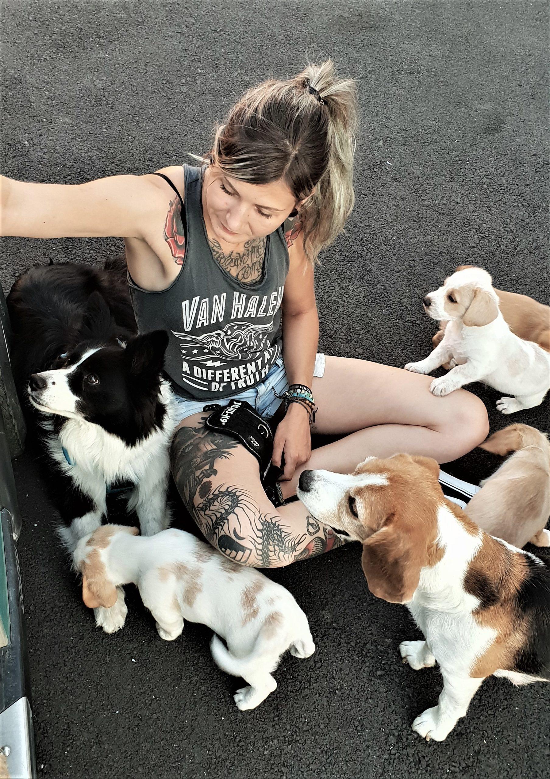 Junge Frau im Schneidesitz von 2 erwachsenen Hunden und 4 Welpen umgeben