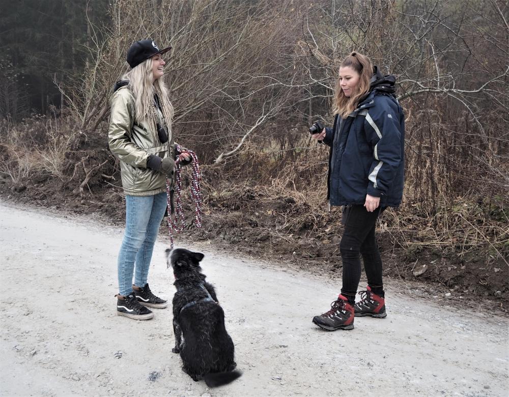 Hundetrainerin hält Hund aus dem Tierheim