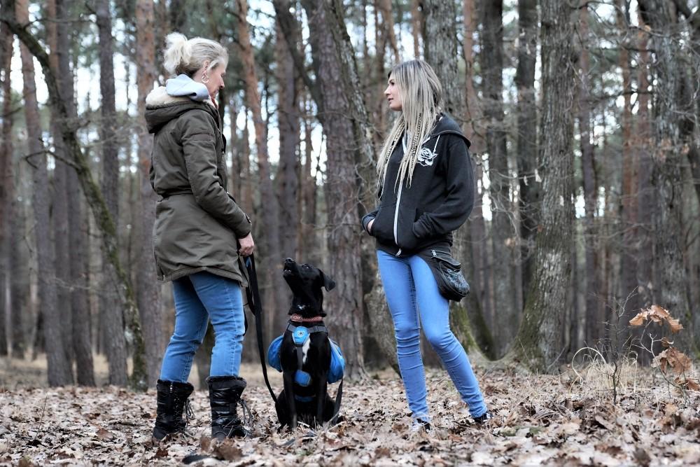 Trainerin spricht mit Kundin im Wald während Hund sie aufmerksam beobachtet