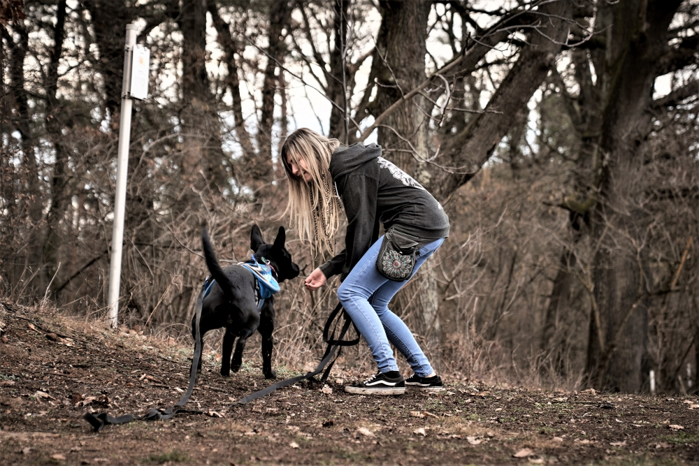 Hund rennt freudig auf junge Frau zu