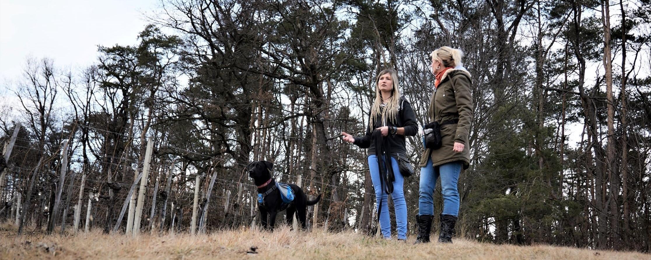 Hundetrainerin spricht mit Kundin im Weingarten