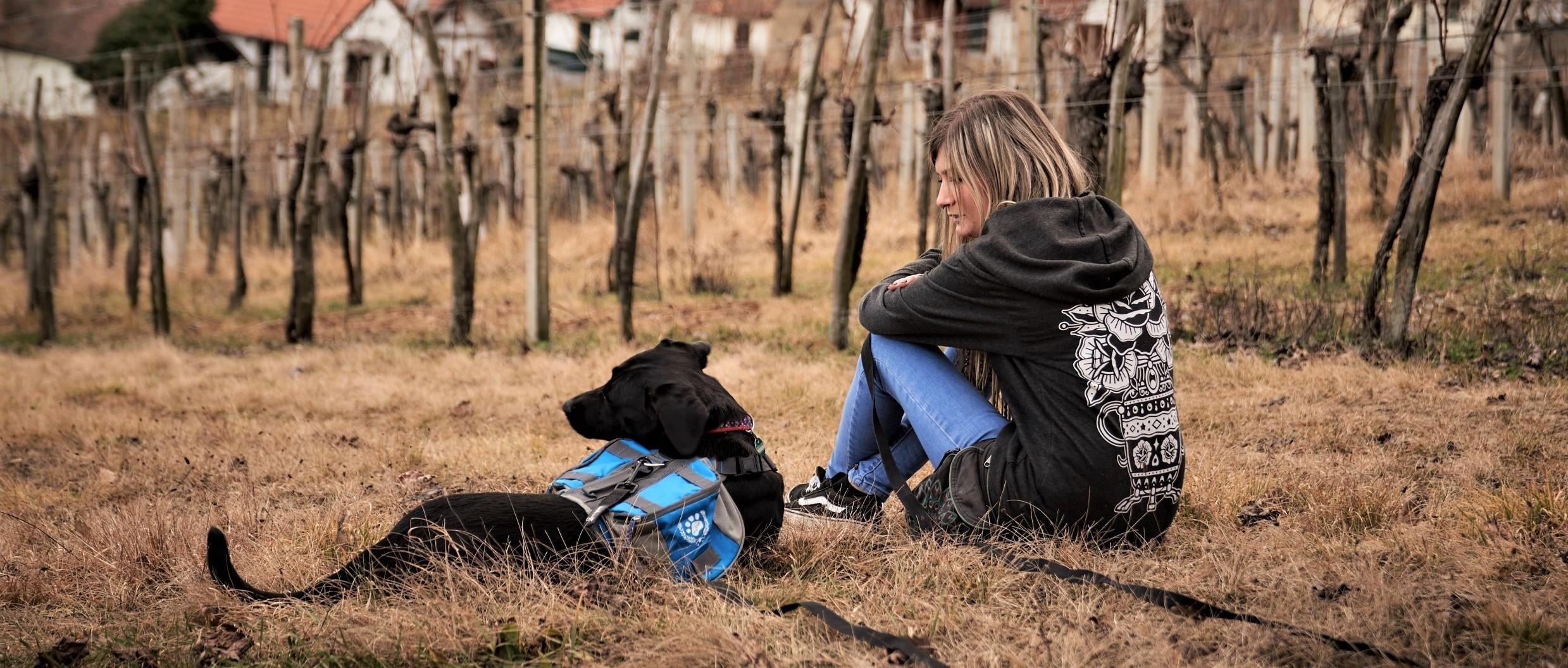 Junge Frau sitzt mit Labradormischling im Weingarten
