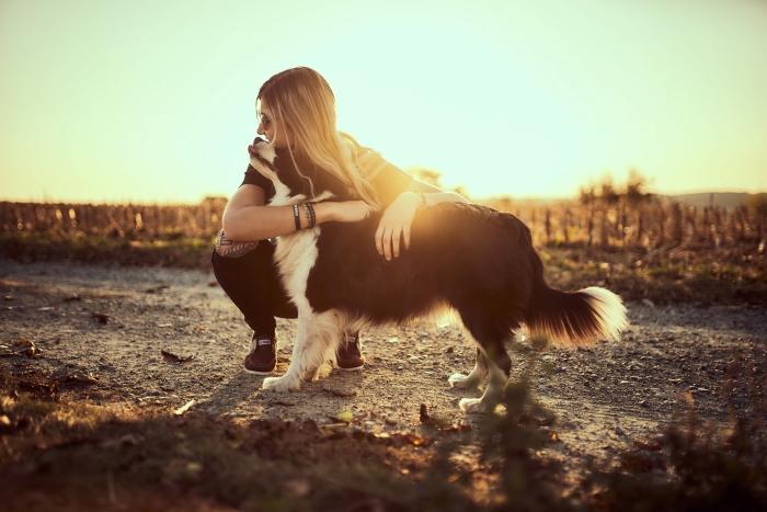 Junge Frau umarmt Border Collie im Sonnenuntergang